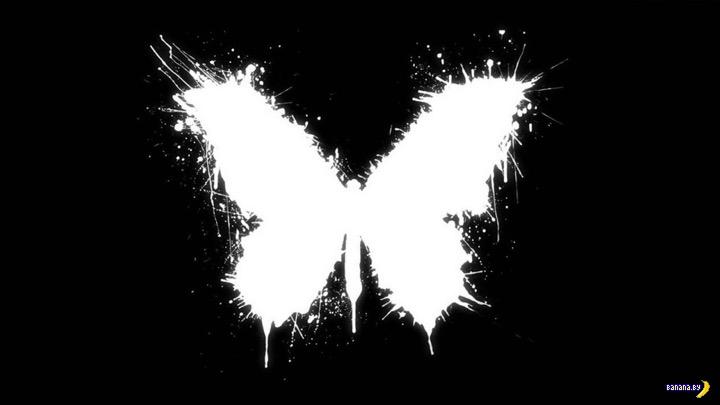 Эффект бабочки в реальной жизни