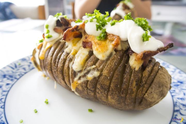 Белорусы, внимание! Картофель в опасности!
