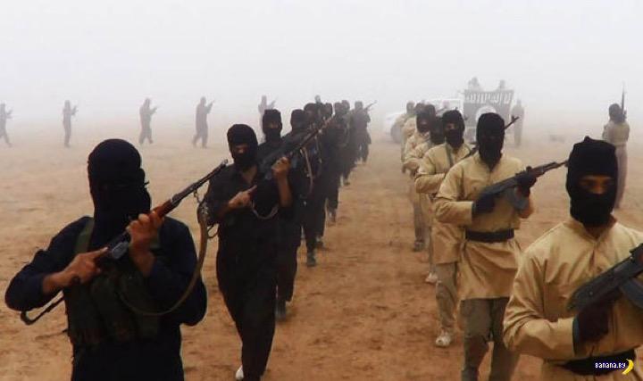 Сколько осталось бойцов в ИГИЛ?