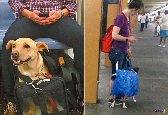 Новые правила в метро Нью-Йорка