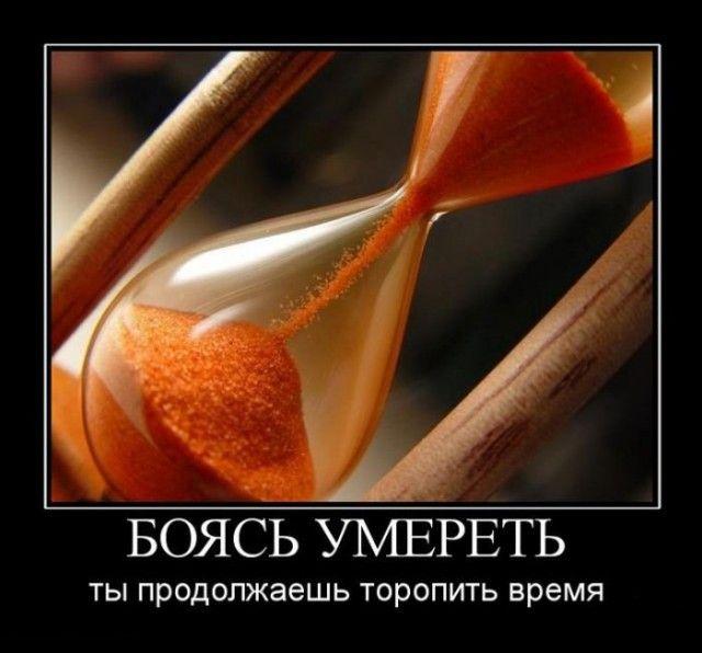Демотиваторы - 919