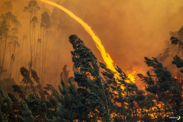 Огненный ад в Португалии