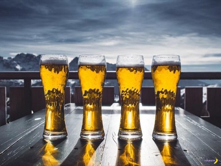 Новые факты про алкоголь, похмелье и всё такое
