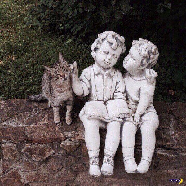 Прикольные картинки - 1854