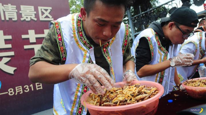 Китайские пожиратели личинок