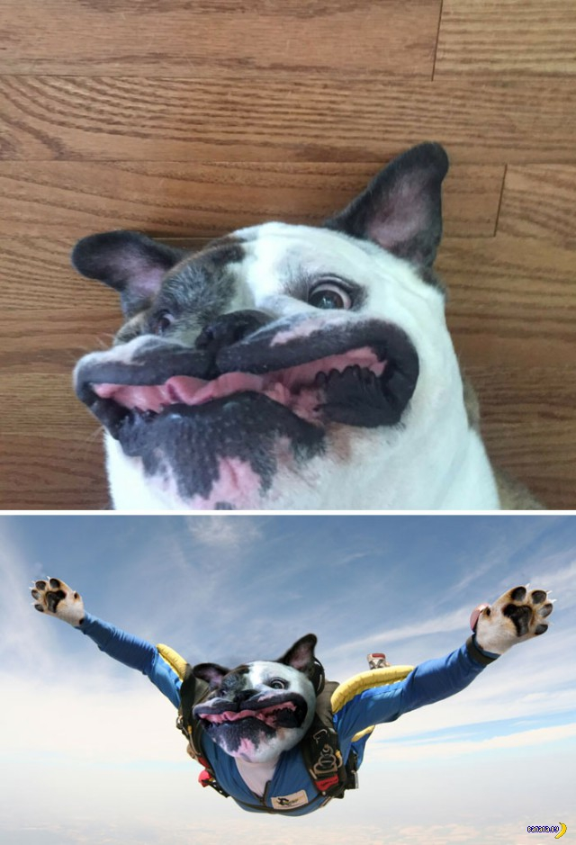 Фотки до и после Фотошопа