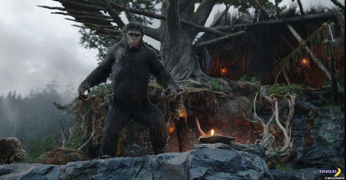 Как снимали фильм «Планета обезьян: Революция»