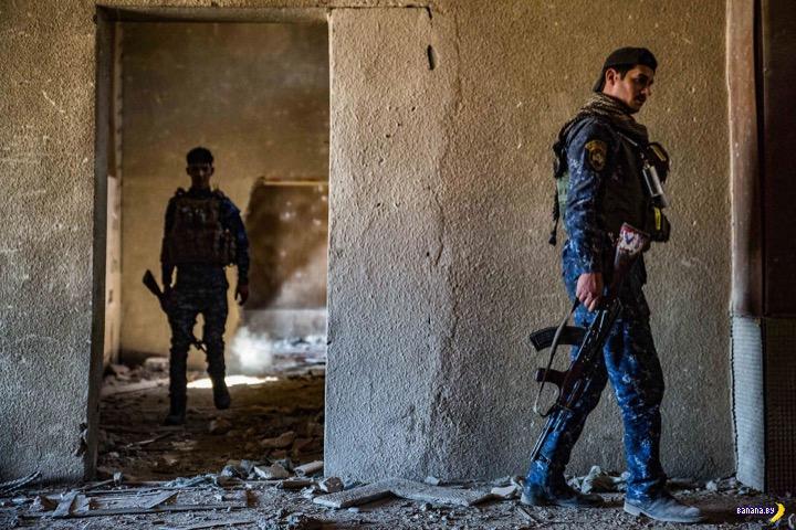 Уникальные фотографии боёв в Мосуле