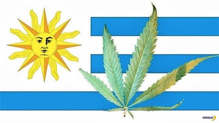 Уругвай легализовал!