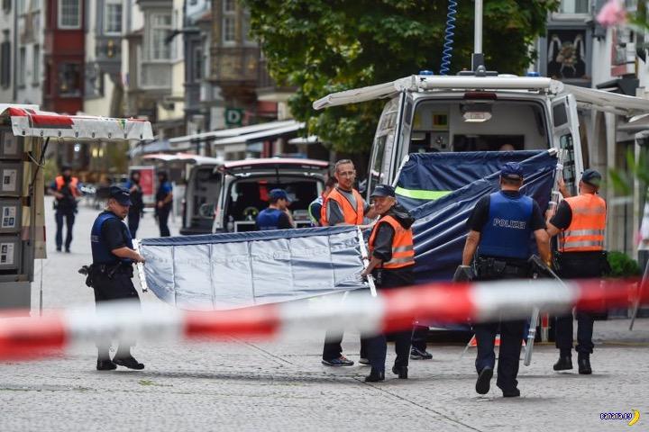 В Швейцарии появился свой дурак с бензопилой