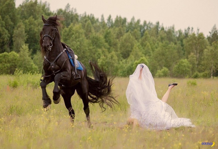Свадебные кошмары - 31