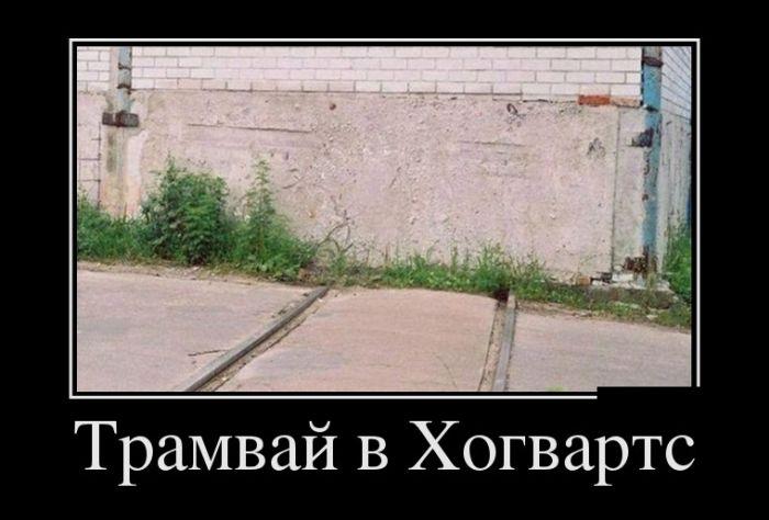 Демотиваторы - 956