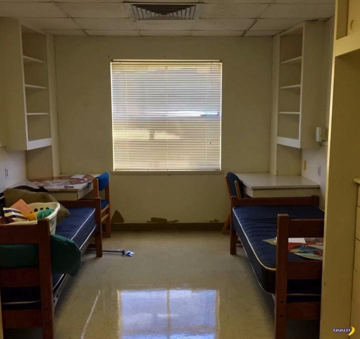 Как две студентки переделали комнату в общаге