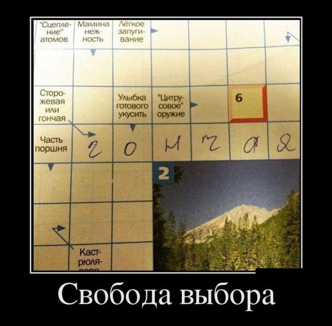 Демотиваторы - 966