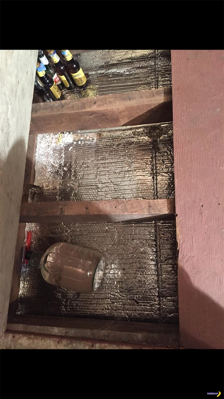 Странная находка под полом дома