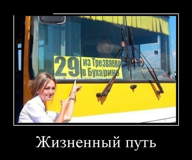 Демотиваторы - 987