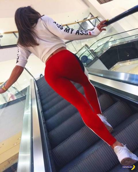 Спортивные девушки - 134