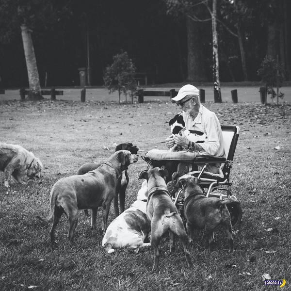 Прикольные картинки - 1930