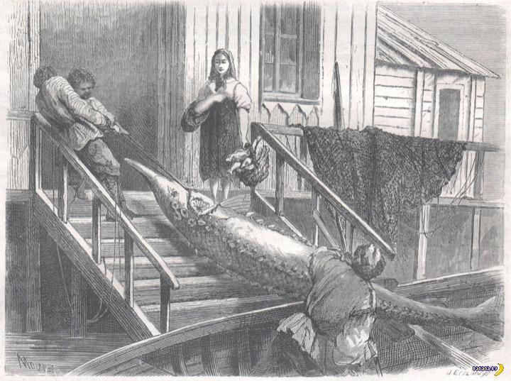 Россия глазами европейца, 1862 год