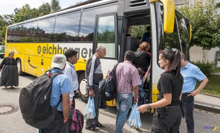 Две новости про мигрантов: Германия и Австрия