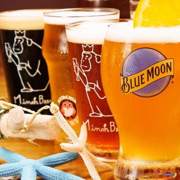 Безлимитное крафтовое пиво в баре!