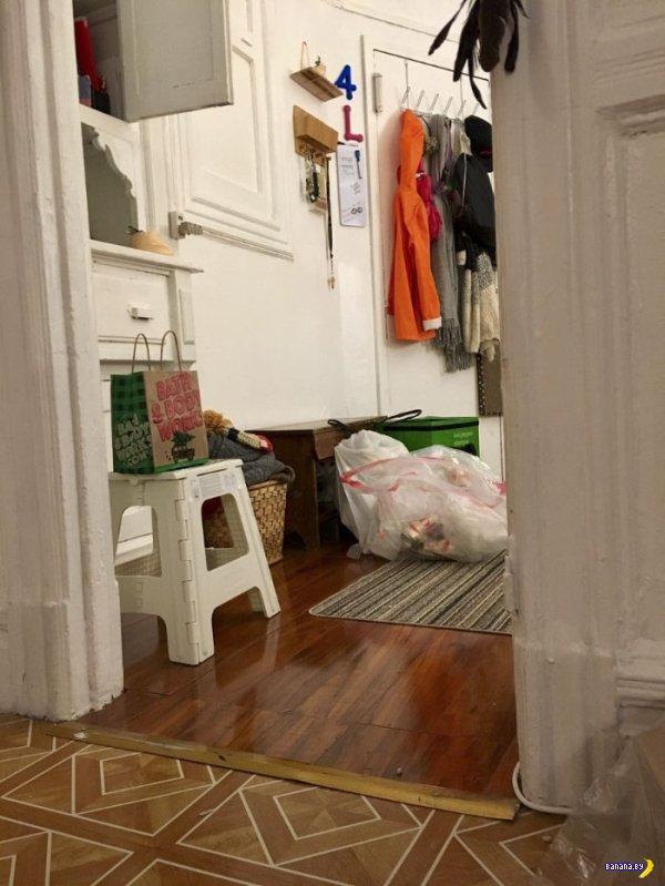 Прячущийся кот Пироджи