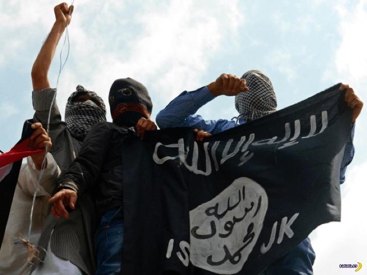 Поминки по ИГИЛ отмечать рано
