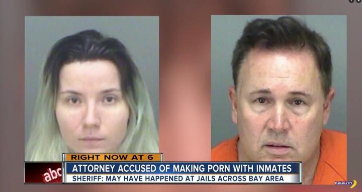 Порно-адвокат