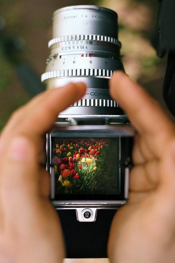 Россыпь красивых фотографий - 206