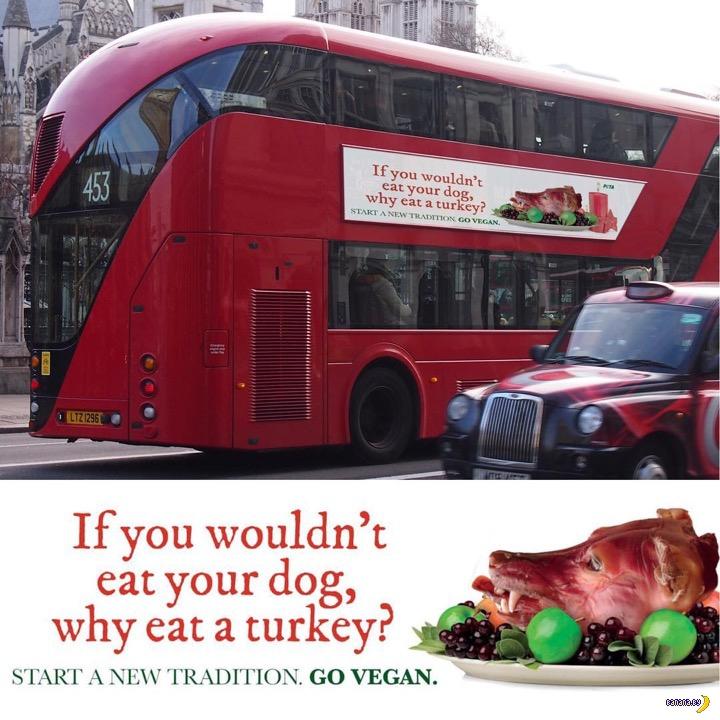 PETA и лондонские автобусы