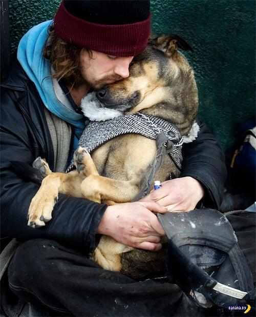 Про бомжей с собаками