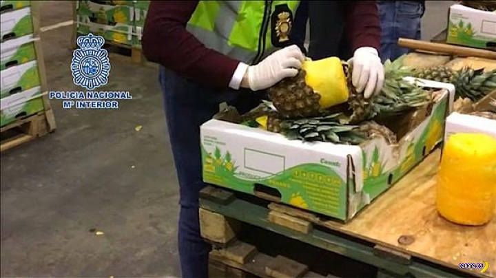 С бананами не прокатило –давай ананасы!