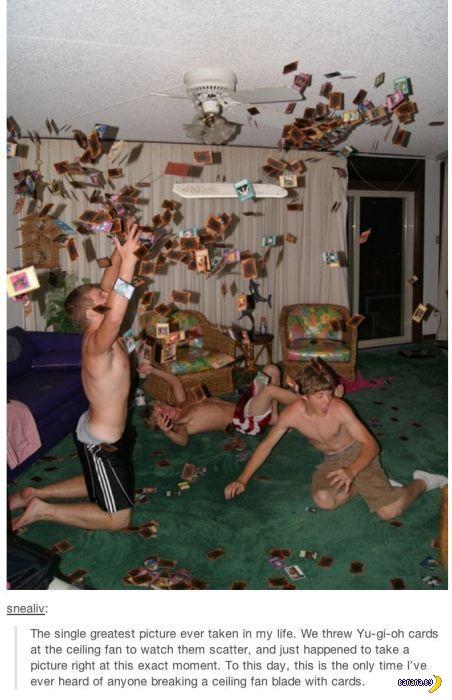 Прикольные картинки - 2008
