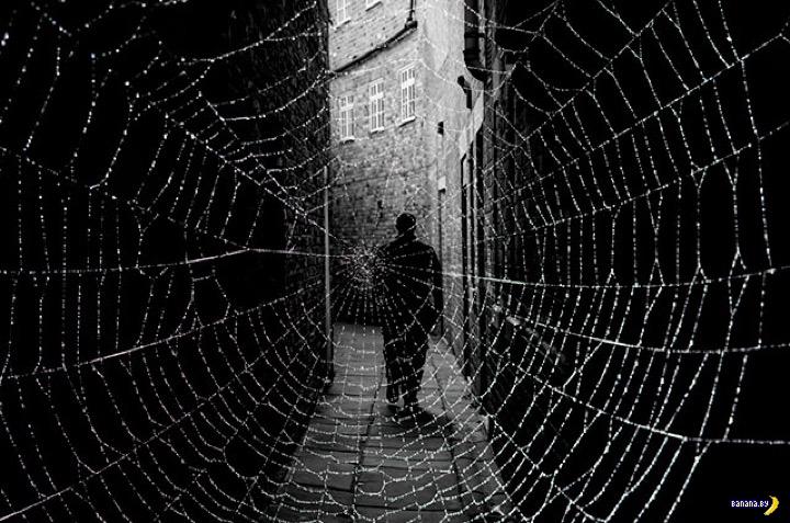 Самое страшное, что можно найти в dark web?