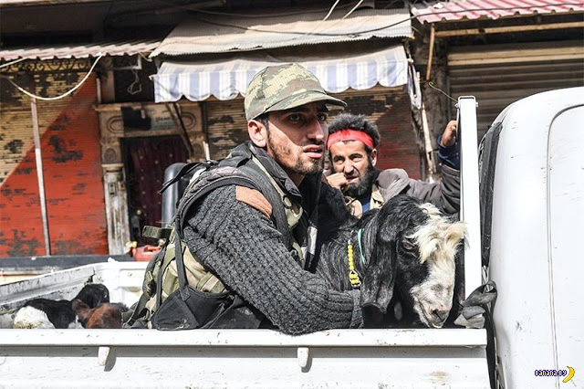 Турки выбили курдов из города Арфин