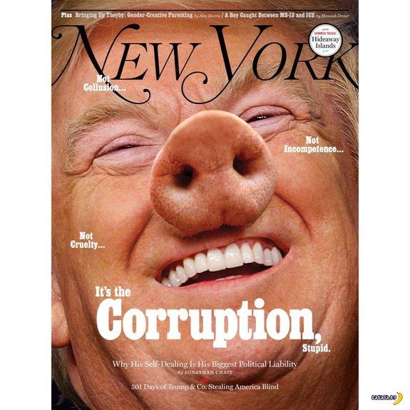Хрюшка-Трамп на обложке журнала