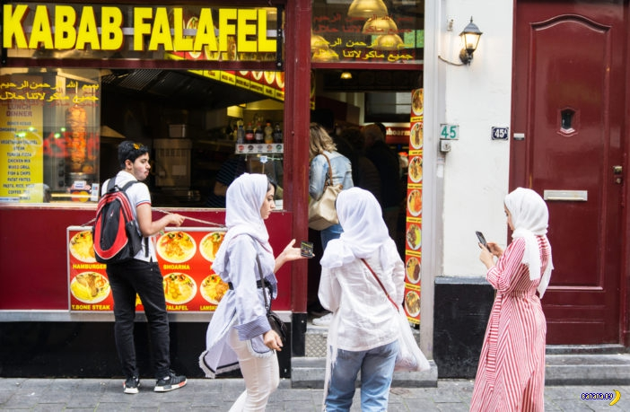 Голландия обеспокоена беженцами-тунеядцами