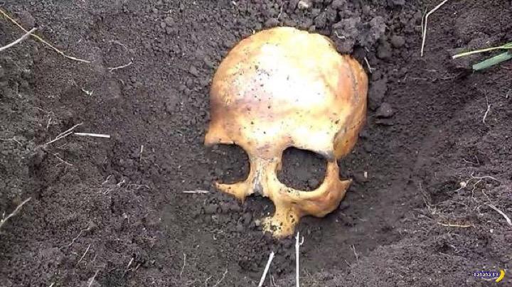 Муж откопал в огороде череп и кости, жена сядет