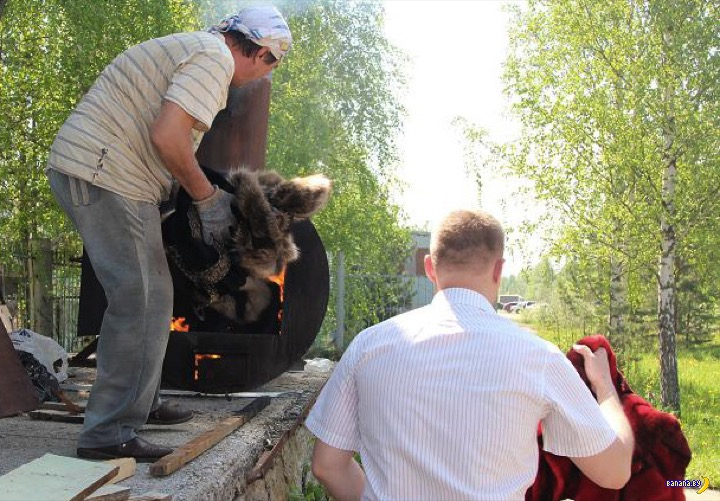 В Томске жгут натуральные шубы
