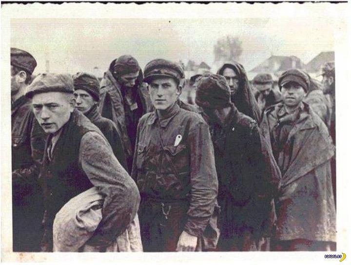 Stalag XVIIIA - разница между военнопленными РККА и союзников