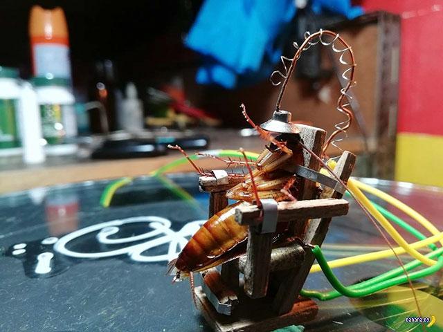 Электрический стул для тараканов