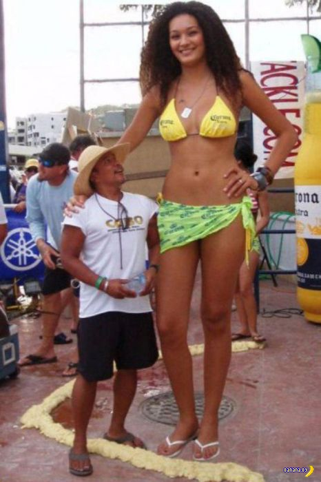 Очень-очень высокие девушки