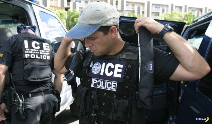 В США занялись депортацией работниц индустрии секса