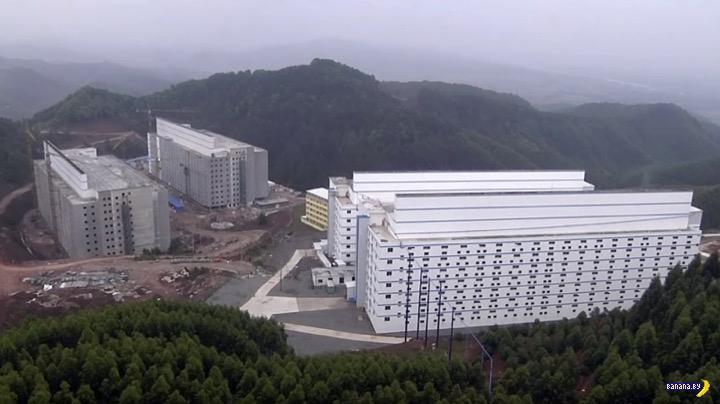 Китайские многоэтажные свинарники –вид изнутри