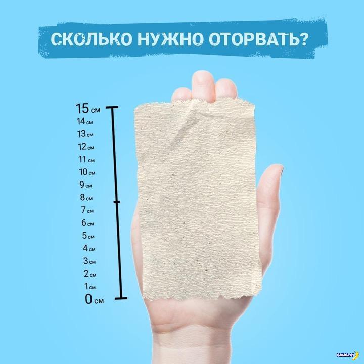 Учат экономить на туалетной бумаге