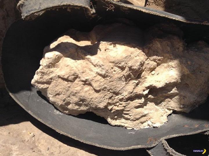 Загадочный сыр из египетской гробницы