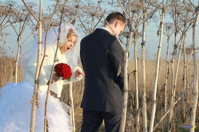 Свадебные кошмары - 59
