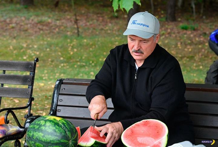Лукашенко собрал урожай арбузов и картофеля