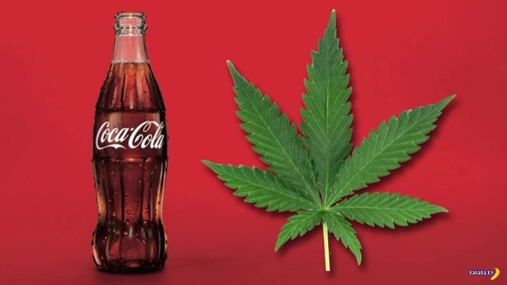 Coca-Cola будет заниматься травкой