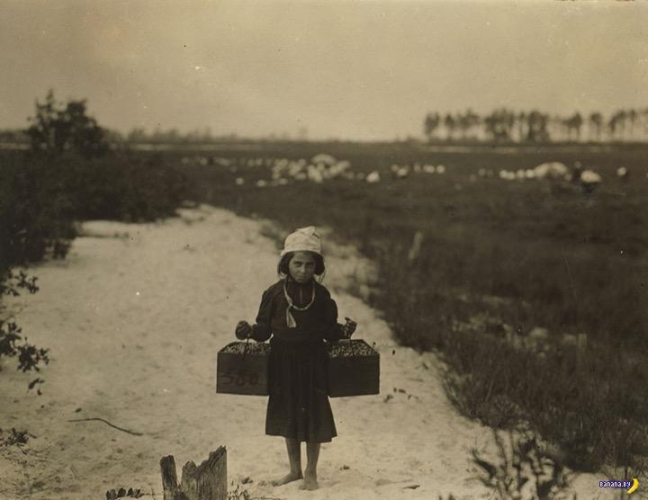 Детский труд в  США в начале XX века